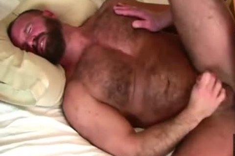 Daddy Bears pound In sofa