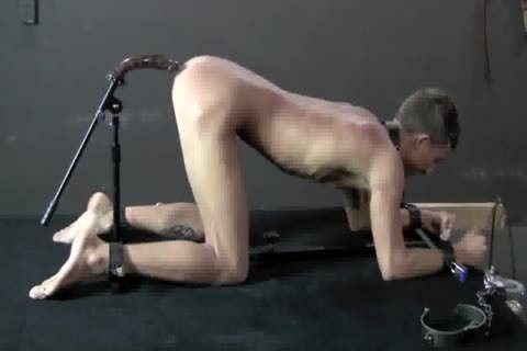 tied up, bondage