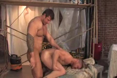 Zeb And Londan