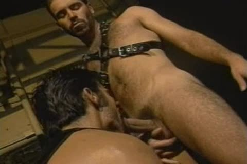 homo Sex w/Leather  ~Vintage